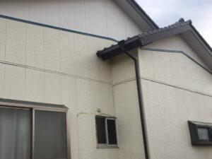 外壁のコケ・カビ 外壁洗浄後(アフター)