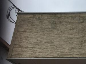 外壁のコケ・カビ洗浄